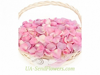 Buy Delicate fresh rose petals cheap with delivery to Kiev and Ukraine
