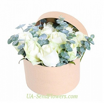 Buy Flowers in a box Muse visit cheap with delivery to Kiev and Ukraine