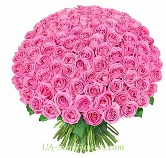 Buy Bouquet of 151 pink roses cheap with delivery to Kiev and Ukraine