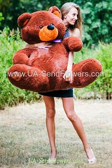 Buy Chocolate Bear 160sm cheap with delivery to Kiev and Ukraine