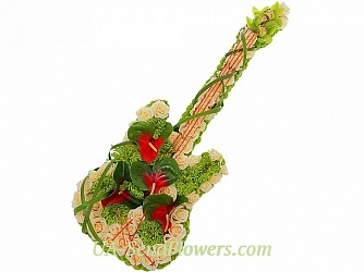 Buy Toy Flower Live Guitar cheap with delivery to Kiev and Ukraine