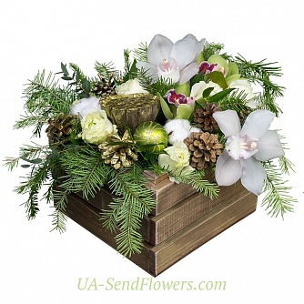 Buy Winter Composition Present cheap with delivery to Kiev and Ukraine