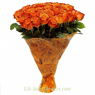 Buy Bouquet of 51 orange roses cheap with delivery to Kiev and Ukraine
