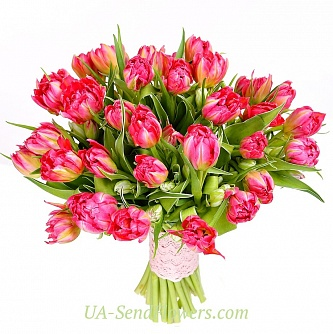 Buy Bouquet of 35 red tulips terry cheap with delivery to Kiev and Ukraine