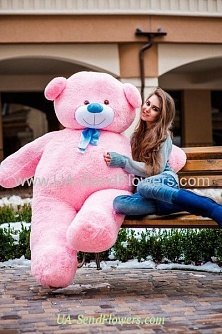 Buy Pink Teddy Bear 200sm cheap with delivery to Kiev and Ukraine