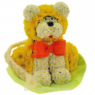Buy Toy Flower Simba cheap with delivery to Kiev and Ukraine