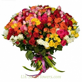 Buy Bouquet of 101 colorful shrub rose cheap with delivery to Kiev and Ukraine