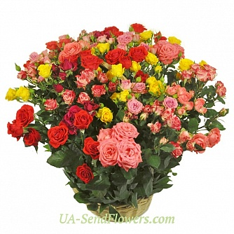 Buy Basket of flowers Flora cheap with delivery to Kiev and Ukraine