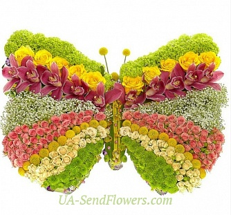 Buy Toy flower Beautiful butterfly cheap with delivery to Kiev and Ukraine
