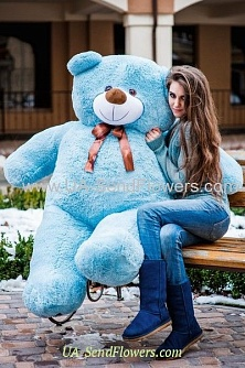 Buy Blue Bear 200cm cheap with delivery to Kiev and Ukraine