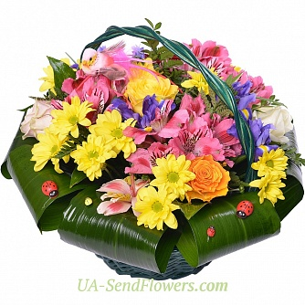 Buy Basket of flowers Rapture cheap with delivery to Kiev and Ukraine