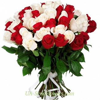 Buy Bouquet of 51 red and white roses cheap with delivery to Kiev and Ukraine