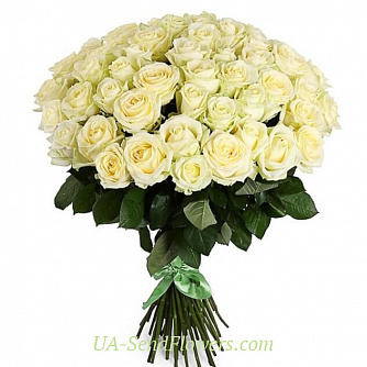 Buy Bouquet of 51 white roses cheap with delivery to Kiev and Ukraine