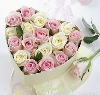 Buy Flowers in a box Flowers tenderness cheap with delivery to Kiev and Ukraine