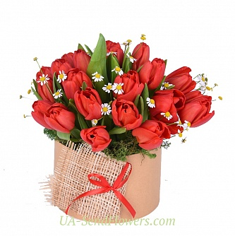 Buy Flowers in a box Bachelier cheap with delivery to Kiev and Ukraine