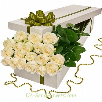 Buy Flowers in a box 19 white roses cheap with delivery to Kiev and Ukraine