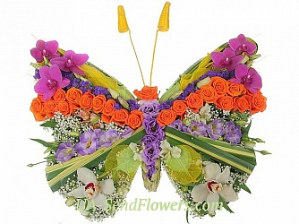 Buy Toy Flower Butterfly - floral oasis cheap with delivery to Kiev and Ukraine