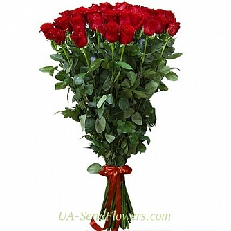 Buy Bouquet of Dutch roses 100 cm cheap with delivery to Kiev and Ukraine