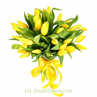 Buy Bouquet of 35 yellow tulips cheap with delivery to Kiev and Ukraine
