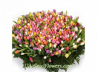 Buy Basket of flowers Gentle charm cheap with delivery to Kiev and Ukraine