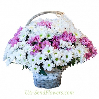 Buy Flowers in a basket of chrysanthemums Rain cheap with delivery to Kiev and Ukraine