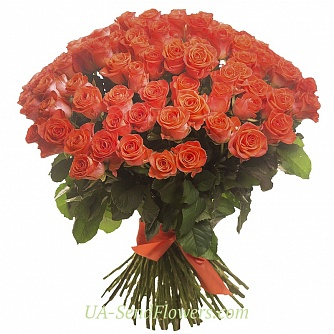 Buy Bouquet of 101 coral roses cheap with delivery to Kiev and Ukraine