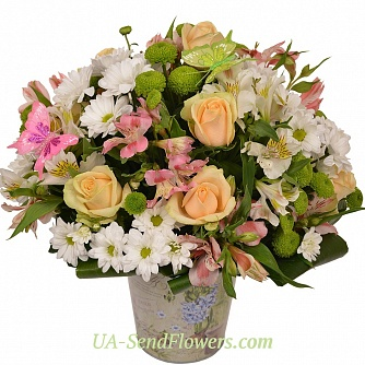 Buy Flowers in pots Sakura cheap with delivery to Kiev and Ukraine