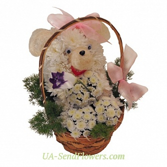 Buy Toy Flower Funny Mishutka cheap with delivery to Kiev and Ukraine