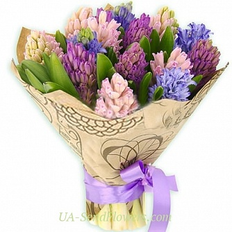 Buy Bouquet of 15 multi-colored hyacinths cheap with delivery to Kiev and Ukraine