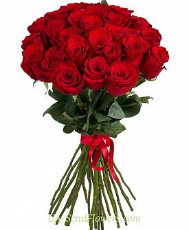 Buy Bouquet of 25 red roses cheap with delivery to Kiev and Ukraine