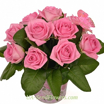 Buy Flowers in pots You my tenderness cheap with delivery to Kiev and Ukraine