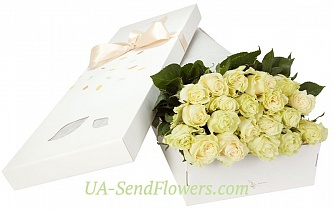 Buy 21 white rose in a box cheap with delivery to Kiev and Ukraine