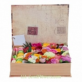 Flowers in a box Magic