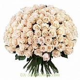 Bouquet of 151 cream rose