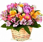 Basket a flowers The beauty
