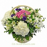 Flowers basket Adore