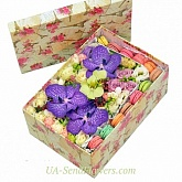Flowers in a box Magic plus