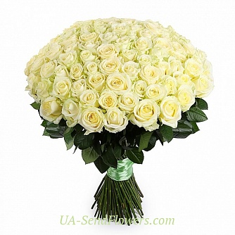 Buy Bouquet of 101 white roses cheap with delivery to Kiev and Ukraine