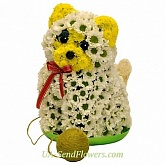 Toy Flower Cat with clew