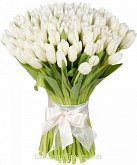 Bouquet of flowers Snow-white tulips