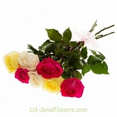 Bouquet of 7 roses mix