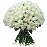 Bouquet of 151 white roses