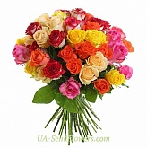Bouquet of 35 multicolored roses