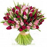 Bouquet of 99 tulips