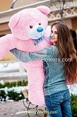 Pink Teddy Bear 135sm