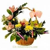 Flowers Basket Day of Knowledge