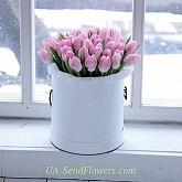 Flowers in box Pink Lady