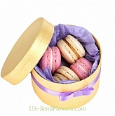 "Sweet Gift ""Air macaroon"""