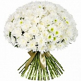Bouquet of 51 white chrysanthemums