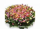 Basket of flowers Gentle charm